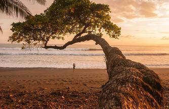 Costa Rica ─ Wandern, Staunen und Genießen
