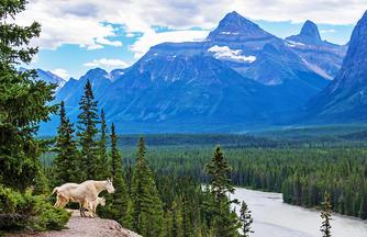 Kanada ─ Rocky Mountains für Genießer