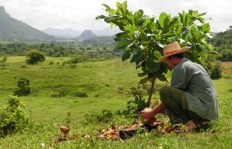 Kuba ─ Kultur und Karibikstrand