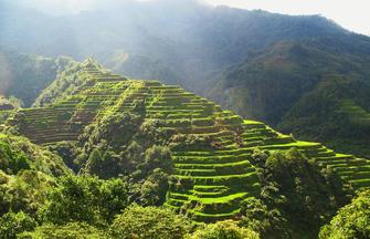 Nord Luzon ─ Die Reisterrassen des Hochlands