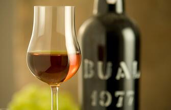 Von Nordportugal bis nach Lissabon