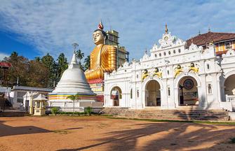 Natürlich Sri Lanka!