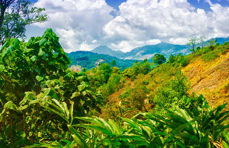 Südindien aktiv: Trekking im Bergland von Kerala