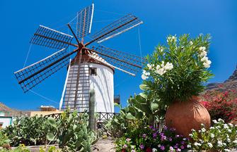 Kanarenquartett ─ Teneriffa, La Gomera, Gran Canaria, Lanzarote