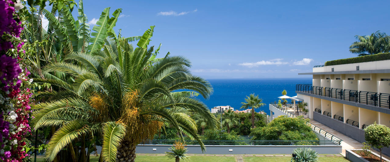 Madeira Panorâmico
