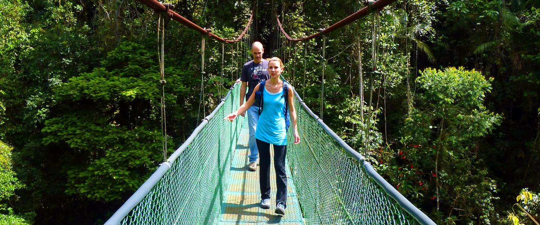 Wandern im grünen Paradies