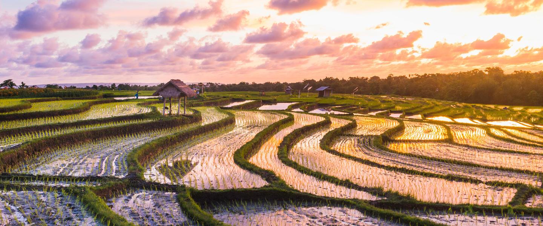 Indonesien ─ geheimnisvoll und facettenreich