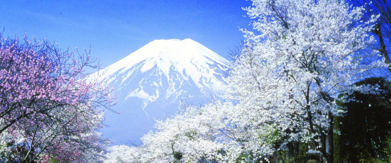 Japan die umfassende Reise