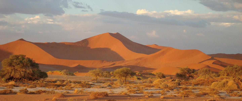 Namibias Höhepunkte