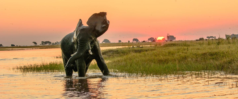 Namibia, Botswana und Simbabwe