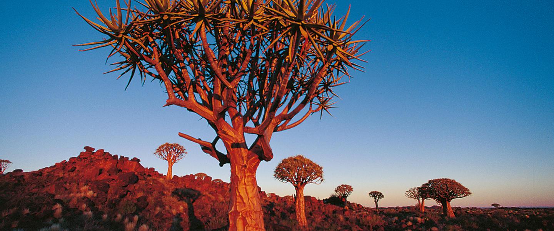 Namibia und Kapstadt