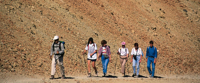 Kanarenquartett Teneriffa, La Gomera, Gran Canaria und Lanzarote