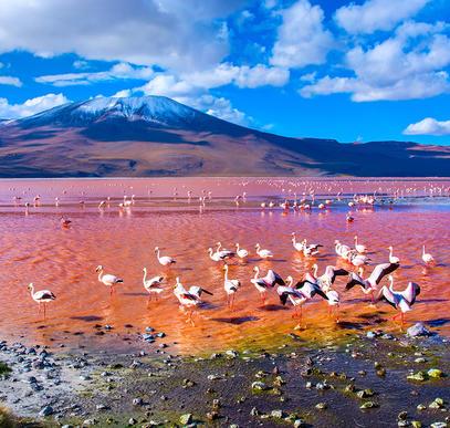 Bezauberndes Bolivien
