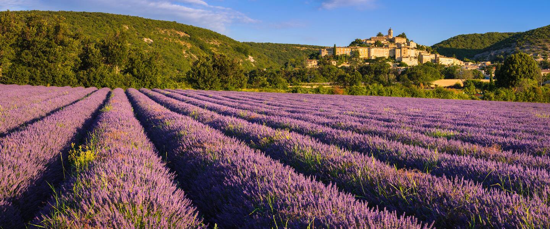 Von Arles in die Provence