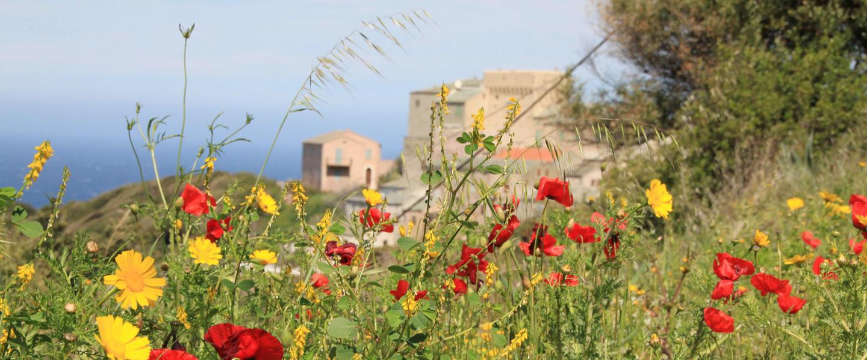 Korsika Bella ─ Gebirge am Meer