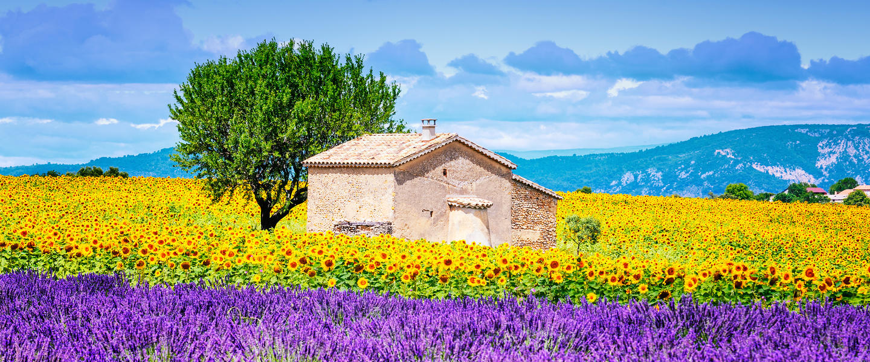 Wandern in der Provence
