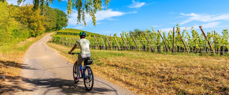 Mit dem E-Bike durch das Elsass