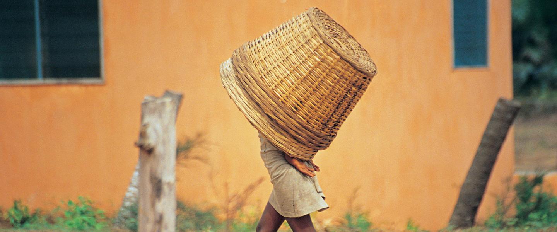 Ghana, Togo und Benin