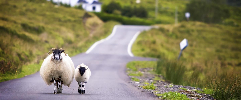 Wanderlust im Land der Schotten