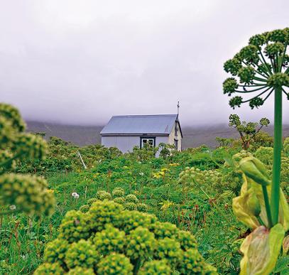 Islands Naturwunder geruhsam erleben