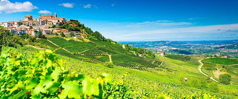 Auf den Spuren des Trüffels im Piemont