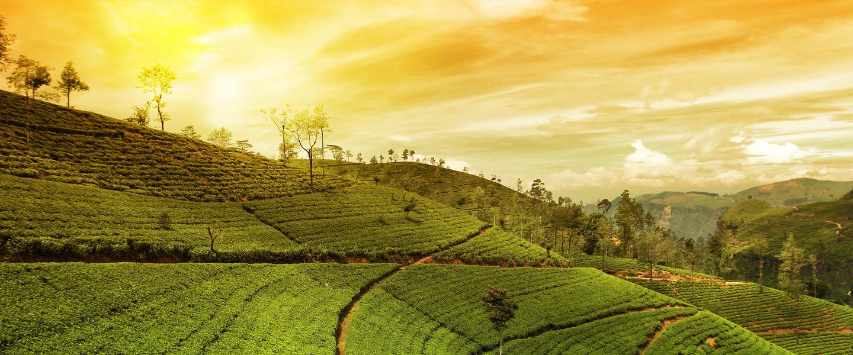 Malaysia ─ Multikulti und Meer