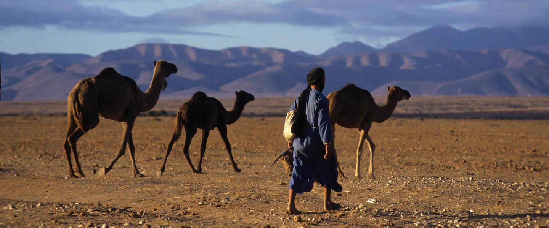 Marokko ─ Unberührter Süden