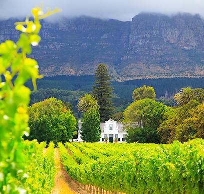 Südafrika Classics zum Kennenlernen