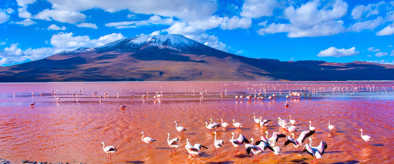 Peru und Bolivien ─ Schätze der Anden
