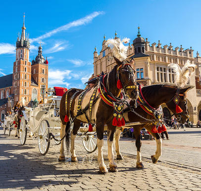 Im Städtedreieck: Krakau, Breslau und Warschau