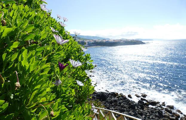 Azoren ─ Die schöne Grüne im Atlantik