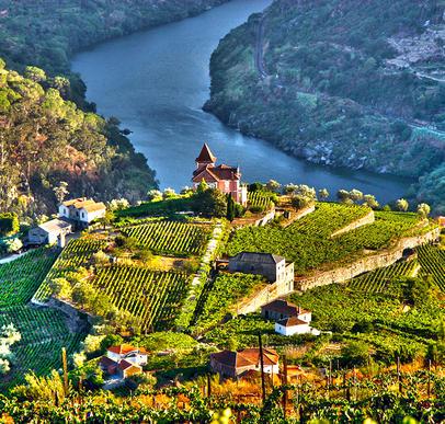 Wein- und Radreise entlang des Douro