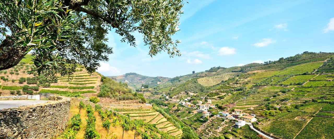 Auf den Spuren von Portugals Küche und Kultur