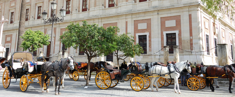 Andalusien ─ Mauren, Tapas und Meer