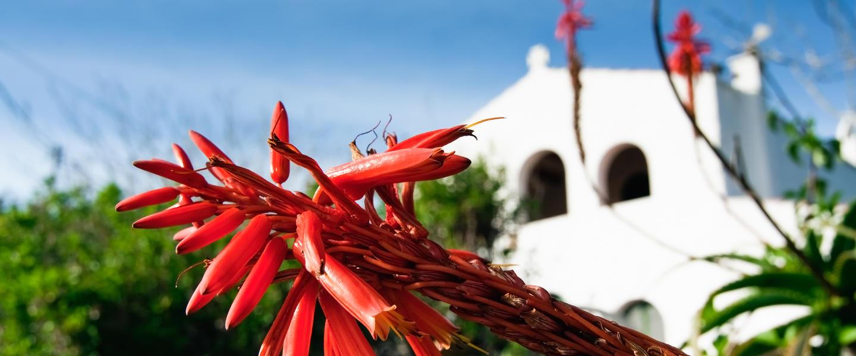 Wandern auf Menorca