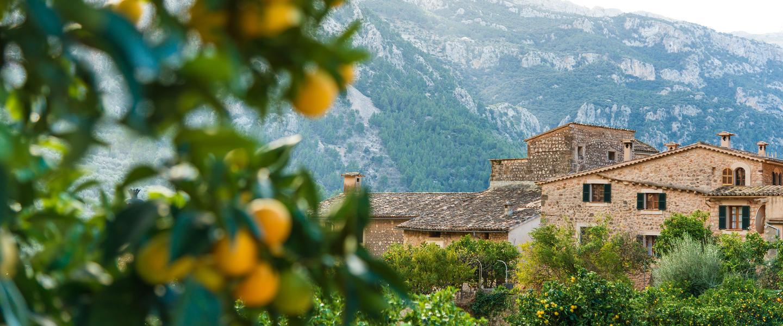 Wunderschönes Mallorca aktiv