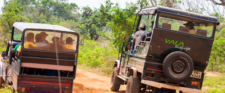 Sehnsuchtsland Sri Lanka