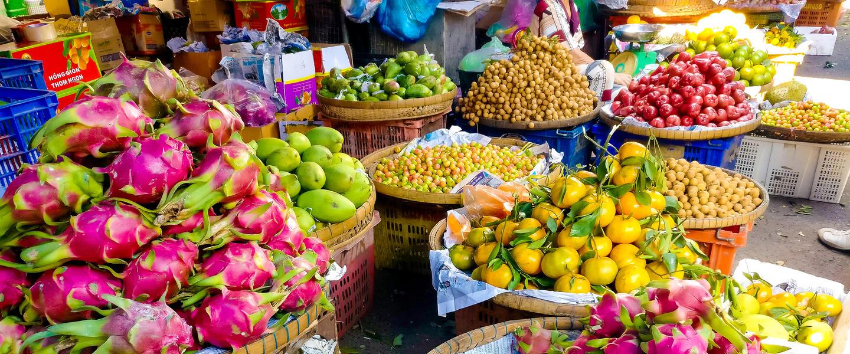 Vietnam auf einen Blick-und Meer