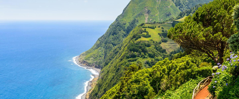 Die schöne Grüne im Atlantik