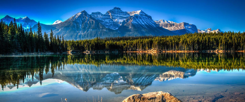 Trans Kanada ─ Goldener Ahorn