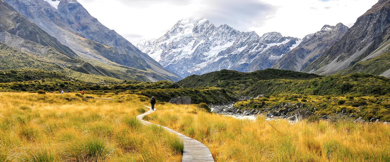 Neuseelandsafari