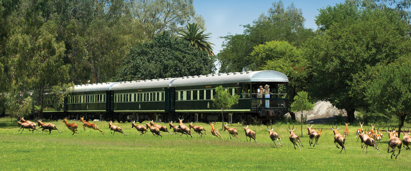 Rovos Rail ─ The Pride of Africa