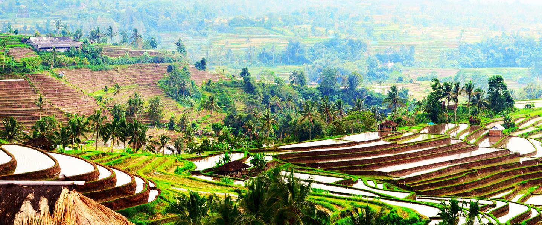 Naturschönheiten auf Sumatra