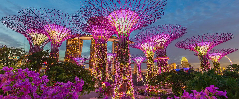 Singapur und Bali ─ Privat
