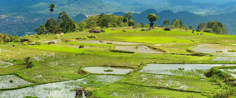 Naturschönheiten auf Lombok