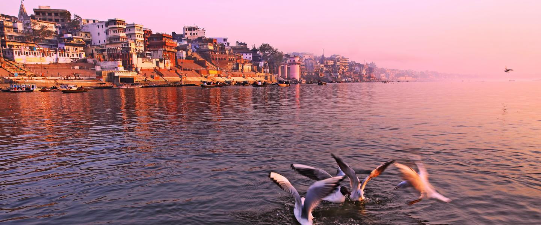 Indien ─ Vom Taj Mahal bis zum Ganges