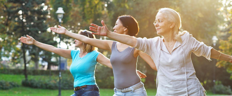 Genuss und Wellness im Westin Sohna ─ 5 Tage-Anschlussprogramm