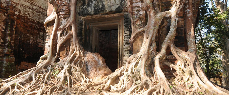 Glanzlichter Vietnam und Kambodscha ─ Privat