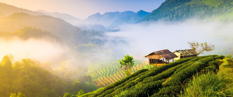 Exotische Naturparadiese Zentralthailands